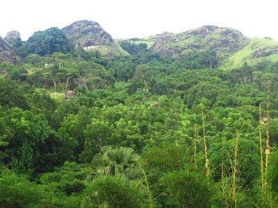 Fidži -  Poznávací zájezdy