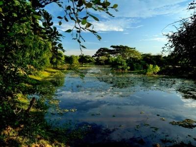 Srí Lanka - Yala National Park