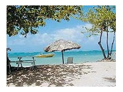 Jamajka - Runaway