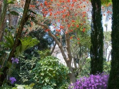 Parc La Villa Forio