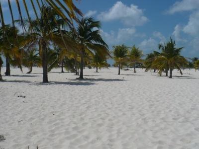 Kombinace Cayo Largo - hotel Sol a Havana - Roc Presidente