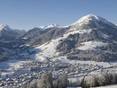 Elisabeth Kirchberg in Tirol
