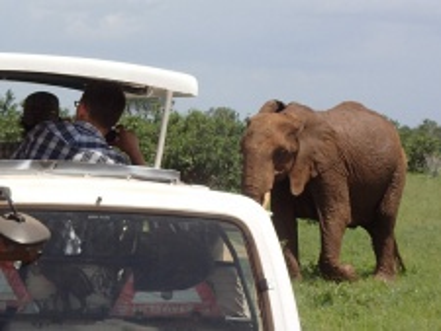 Safari okruh Keňa s pobytem u moře