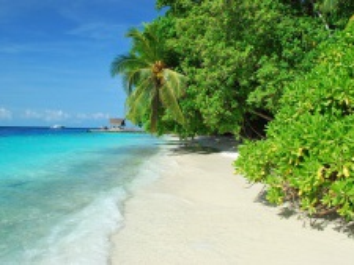 Srí Lanka a Maledivy za poznáním