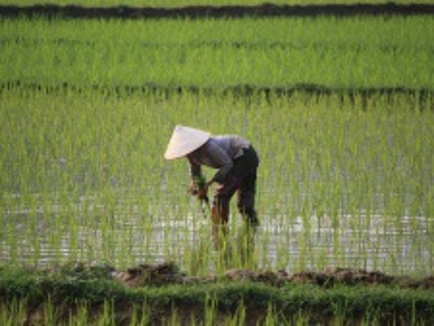 Ze Sečuánska do Vietnamu - přes bájnou Šangri-la