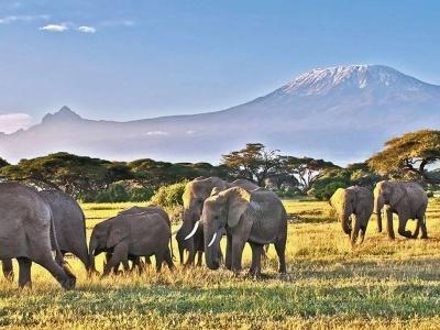 Keňa - Tanzánie - Zanzibar, safari s odpočinkem