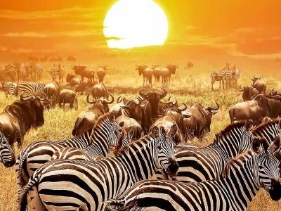 Keňa - Africké přivítání