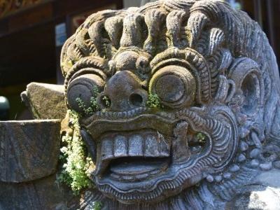 Bali - ostrov bohů a rýžových polí