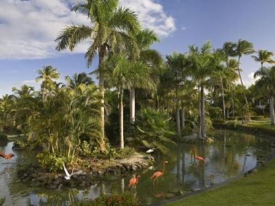 Melia Caribe Beach Resort