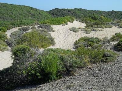 Hory, pouště a moře Andalusie