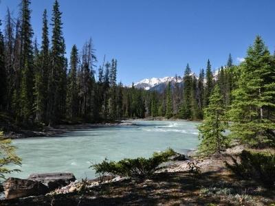 Západní Kanada - cesta divokou kanadskou přírodou