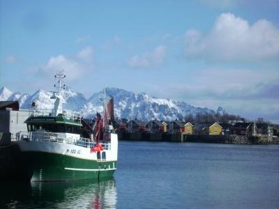 Lofoty a příroda za polárním kruhem