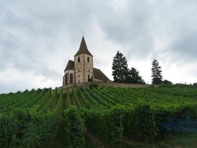 Francie - Kouzelné Alsasko i vinná stezka