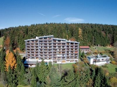 Bayerwald Haus Neureichenau